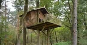 Dormire in case sugli alberi in Italia: 6 luoghi da provare
