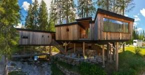 10 case sull'albero dove dormire in Italia