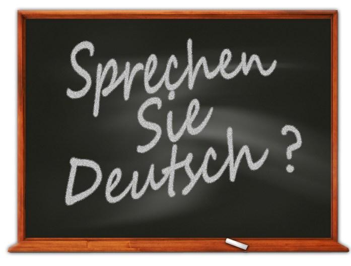 il tedesco