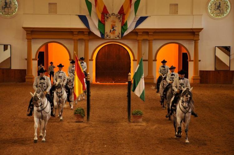 como bailan los caballos andaluces jerez de la frontera