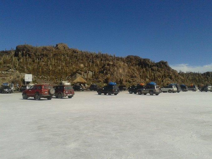 isla cactus deserto di sale