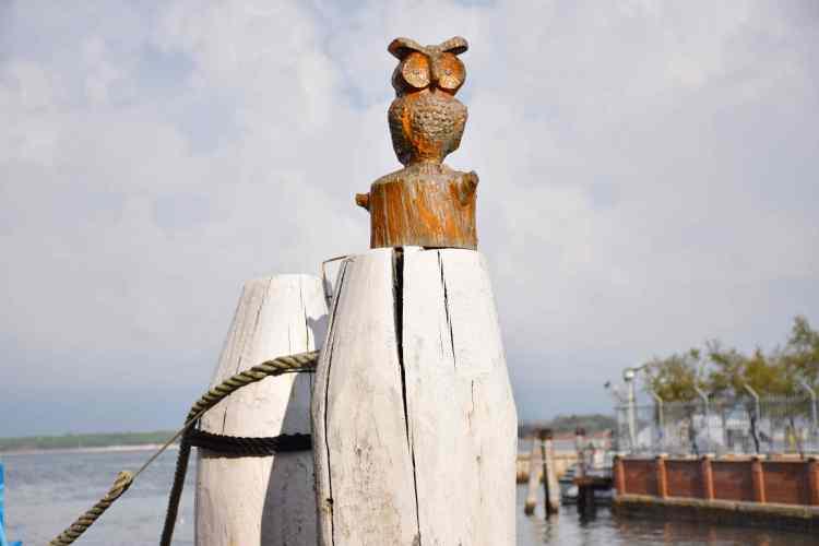Un gufo porta fortuna custodisce il canale del centro storico di Chioggia