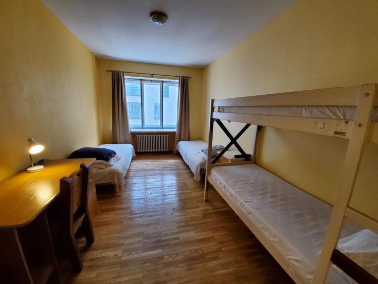 euphoria hostel uno dei migliori ostelli di tallinn