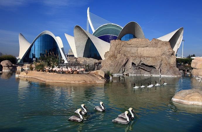 un punto di vista della struttura dell' acquario di valencia
