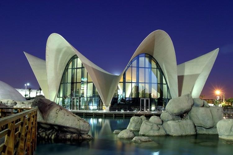 la struttura dell'oceanogràfic, l'acquario di valencia all'interno della città delle arti e delle scienze