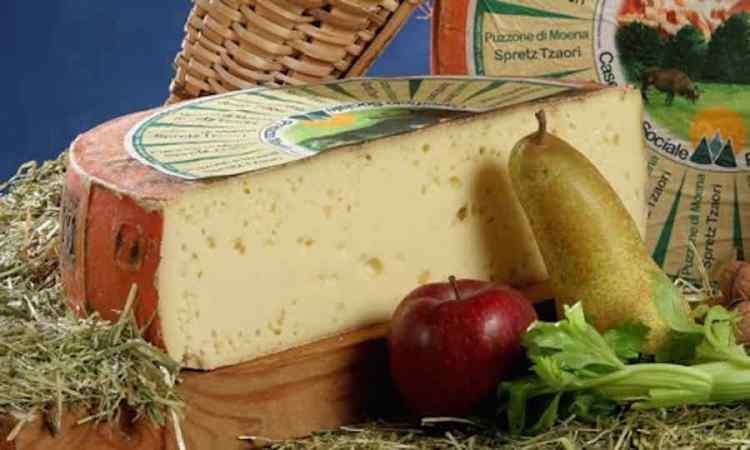 il puzzone di moena DOP formaggio tipico della val di fassa