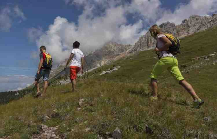 sentieri di trekking sui sentieri dell'alpe di pampeago in val di fassa trentino alto adige
