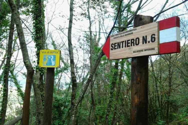 un dettaglio del percorso lecci sapienti del parco naturale cascate delle marmore