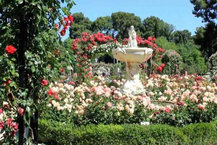 la rosaleda nel Parco del Retiro di Madrid