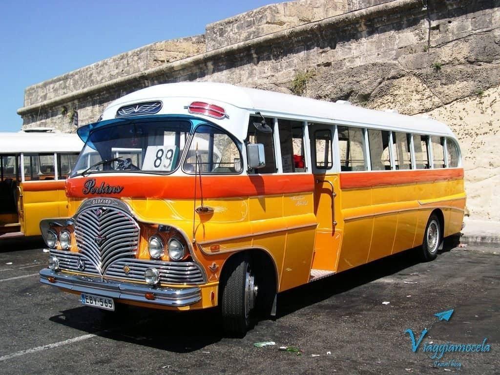 Bus maltese