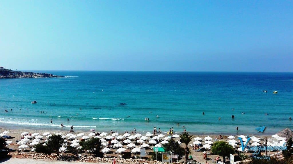 IMG_20160805_100847 Cipro, la mia seconda patria
