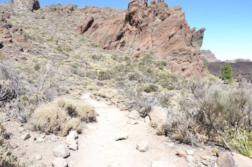 Sentieri sul Teide