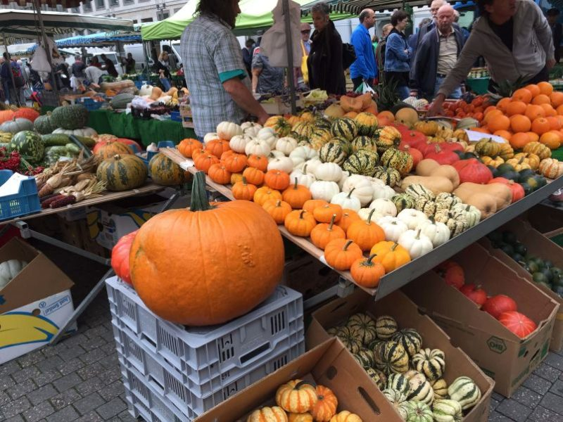 Zucche al mercato comunale di Stoccarda