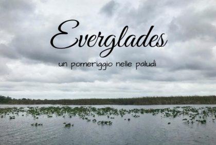 Escursione alle Everglades, un pomeriggio nelle paludi