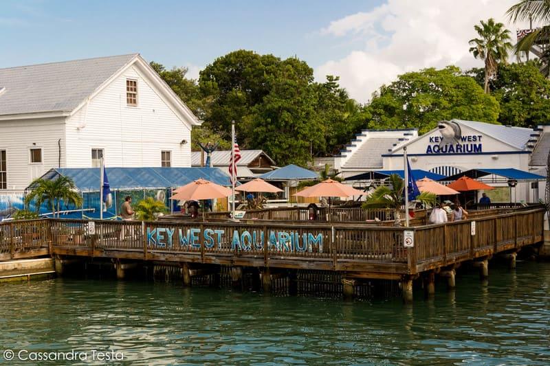 Key West Acquarium