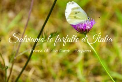 Salviamo le farfalle d'Italia