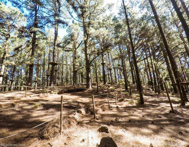 Forestal Park di Tenerife
