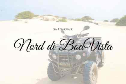 Quad Tour del Nord di Boa Vista