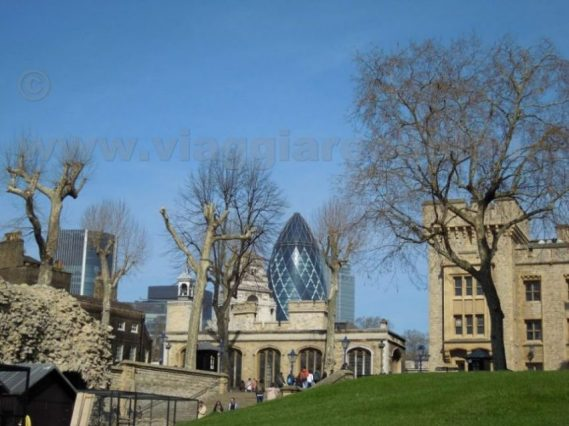 view on gerkin from tower of london