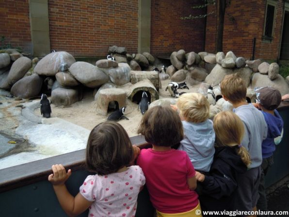 zoo di stoccarda germania