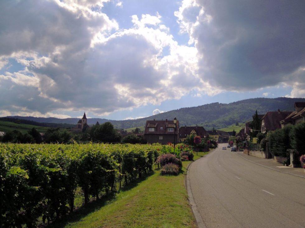 alsazia-strada-del-vino