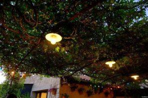 le remparts restaurant venasque