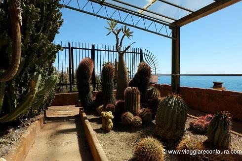 giardino esotico pallanca bordighera (3)