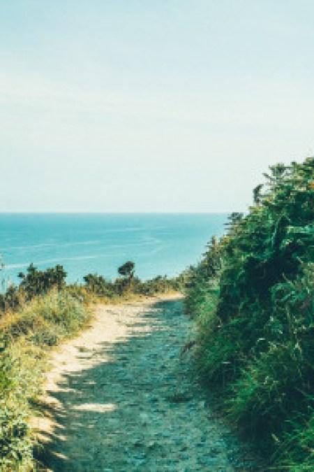 Sentiero sulle scogliere di Howth