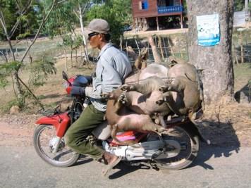 Cambogia - Verso Siem Reap