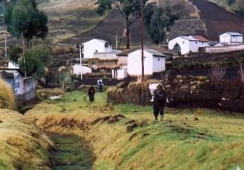 Ecuador - Colta - Scene di vita