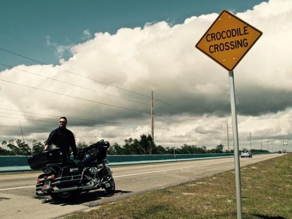 U.S.A. - Florida Keys - Segnali stradali