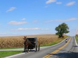 U.S.A. - Pennsylvania - Amish