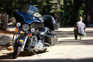 Viaggio in moto negli USA - California - Sequoia National Park