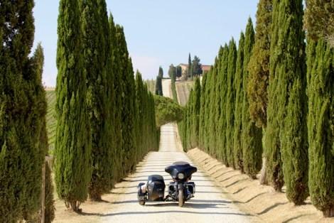 Dentro il vino: Castellina in Chianti - Località Casale