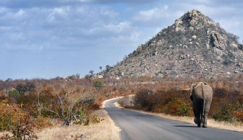 Itinerario in Sudafrica. 3 settimane fai da te
