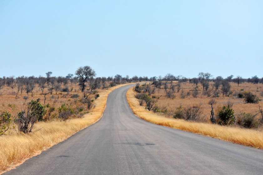safari_sudafrica-on-the-road-self-drive
