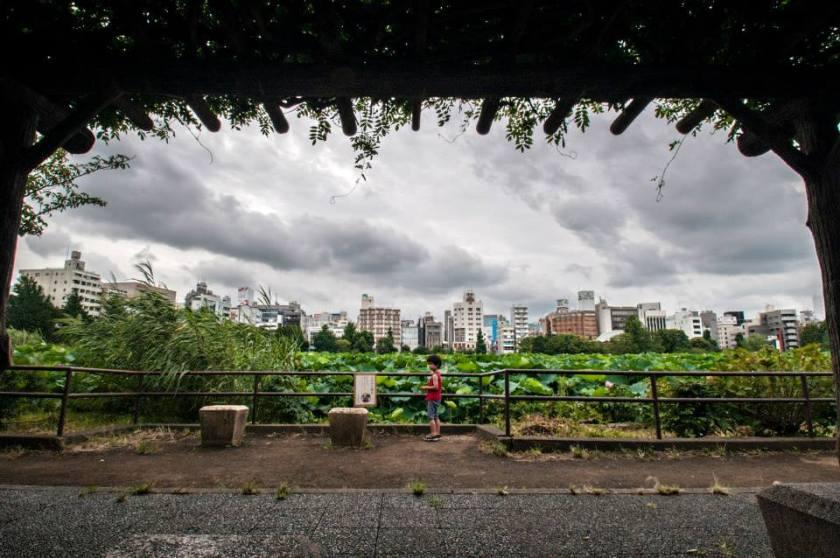 parchi verdi a tokyo