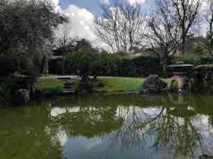 Il laghetto e la lampada tōrō del giardino dell'istituto giapponese di roma