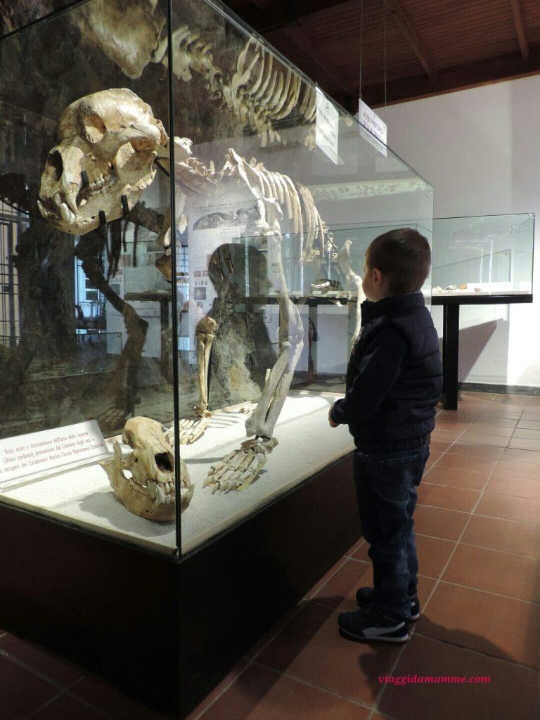 Le Grotte di Toirano, meraviglia della natura - Andrea e i resti ossei dell'orso delle caverne -