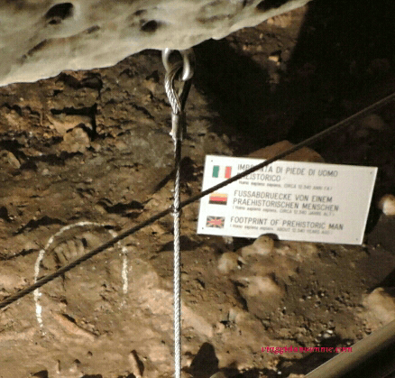 Impronta dell'uomo preistorico