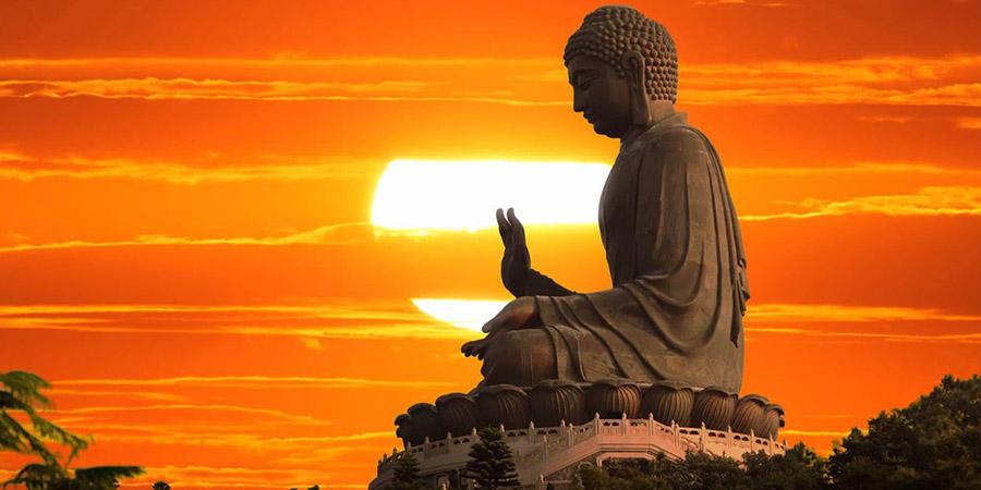 Meditazione Trascendentale e controllo del corpo