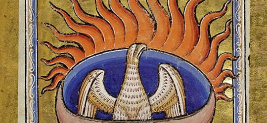 La fenice simbolo di rinascita
