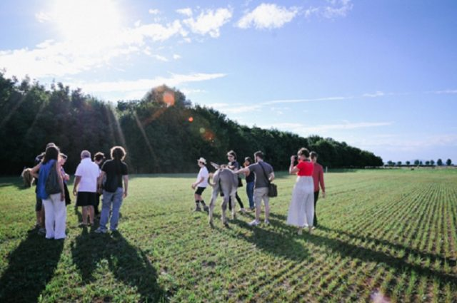 paesaggi-rurali-credits-sara-bacchiega (3)