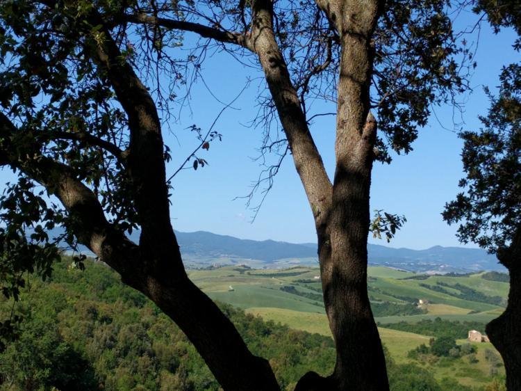 campagna-toscana-paesaggio