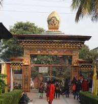 2020 Buddha trai263 lav