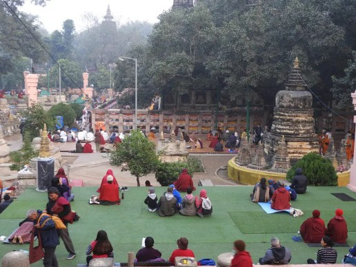 2020 Buddha trai312 lav