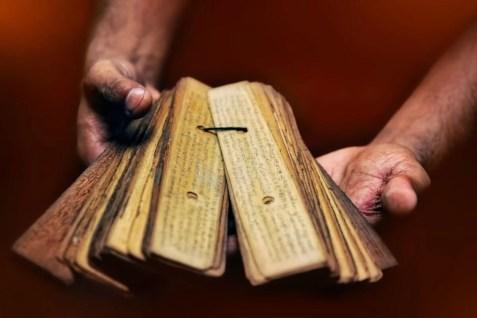 lettura delle foglie di palma