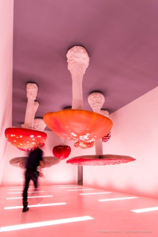 "Carsten Höller, Upside Down Mushroom Room. Fondazione Prada, Torre, exhibition center. Opening during the Milano Design Week 2018. Nikon D810, 24 mm (24-120 mm ƒ/4) 1/125"" ƒ/8 ISO 64"