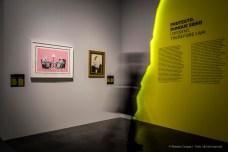 Banksy-Mostra-Mudec-2018-©-Renato-Corpaci-16