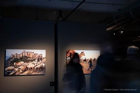 Steve-McCarry-Animals-Mudec-Photo-Milano-2018-©-Renato-Corpaci-1